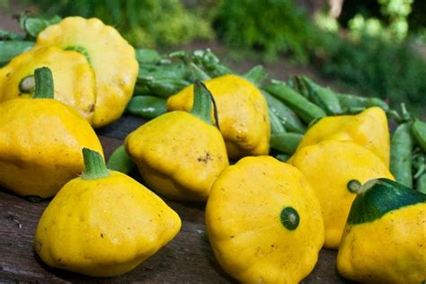 patty pan squash pretty in the pan stuffed patty pan squash oh she glows