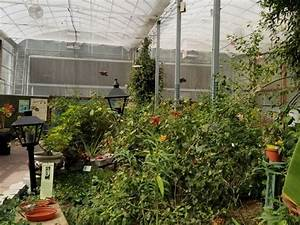 Cypress Gardens Is Worth A Visit