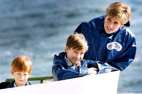 Prince William Sad Princess Diana Never Met His Wife And