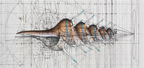 Rafael Araujo Mathematical Illustrations Nature