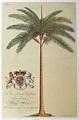 Palm Print (HRH Frederick Prince of Wales) – Royal ...