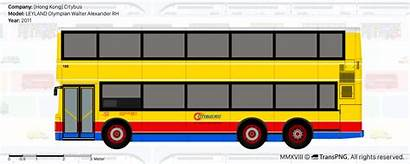 Transpng Bus Drawings Citybus Views