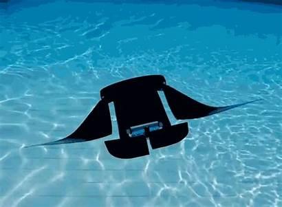 Manta Ray Robot Singapore Underwater National Vehicles