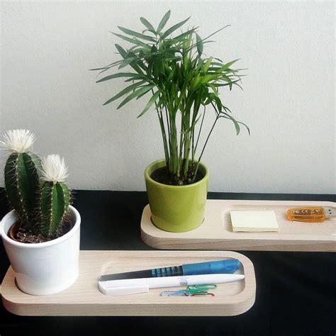 plantes de bureau plante pour bureau d 233 coration bureau plantes