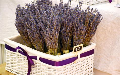 Basket Of Lavender Wallpapers - Wallpaper Cave
