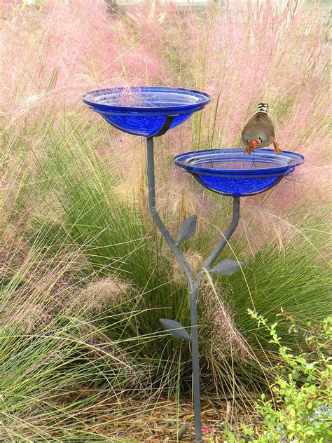 blue bird bath by rosalie scanlon