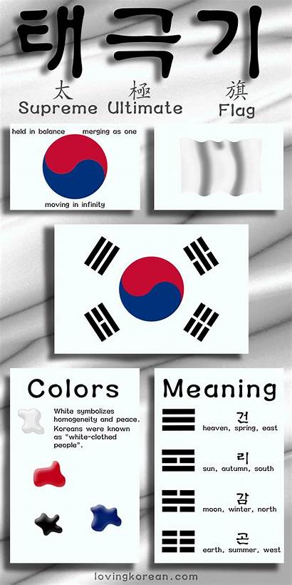 Flag Korean South Korea Meaning Infographic Infographics