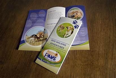 Paws Fuzzy Brochure Hourglass Studios Tri Fold
