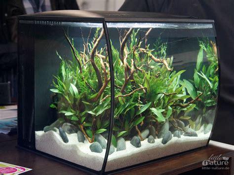 fluval flex aquarium set   bunte katzede