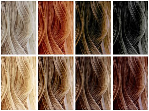 Best Hair Color by Hair Color Color Correction Hair Odyssey