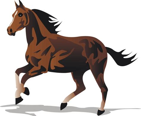 strong horse idioms animal meanings meaning meaningful yet funny