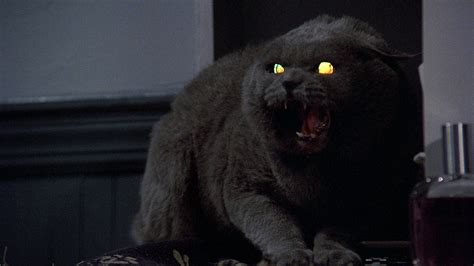 King On Screen Pet Sematary (1989) Deadshirt