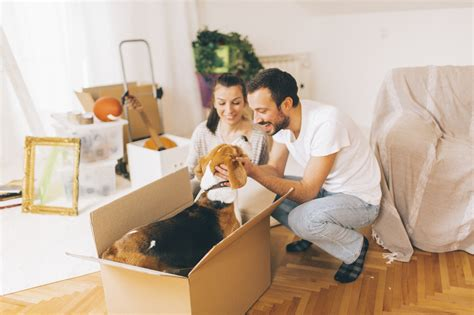 Petfriendly Rental Properties Are A Good Investment