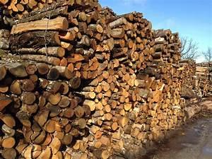 1 Stere De Bois Poids : 1 m st re chataignier ~ Dailycaller-alerts.com Idées de Décoration