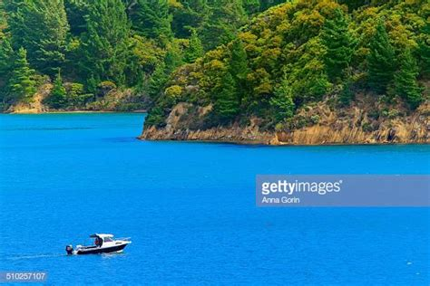 Small Boat Nz by Sound Stock Photos And Pictures Getty Images