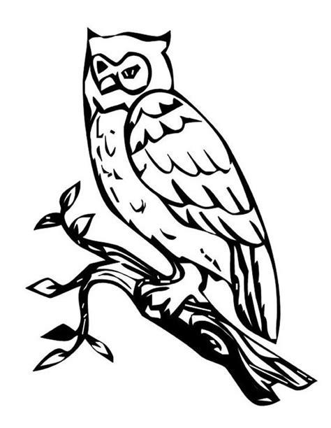 owl  branch drawing  getdrawings