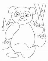 Panda Coloring Pages Cute Bear Bamboo Combo Printable Cartoon Baby Giant Boyama Sophisticated Pandas Sheets Printables Sayfası Getcolorings Preschool Animal sketch template