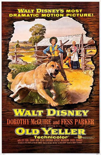 Yeller Wikipedia Film Tommy Oliver Wiki 1957