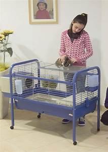 Grande Cage Pour Chien : grande cage a lapin sur roulette ~ Dode.kayakingforconservation.com Idées de Décoration