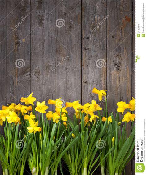 flowers wood fence background stock image image