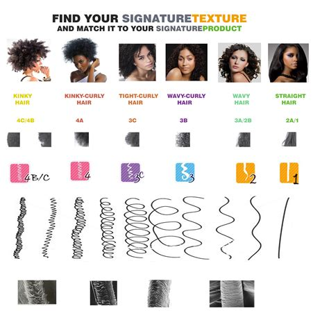 Categories Of Hair by Hair Jlh Mj Pj