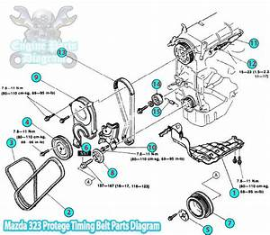 1992 Mazda 323 Protege Timing Belt Parts Diagram  B6 Engine
