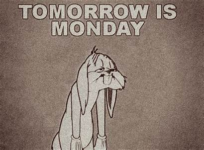 Monday Funny Tomorrow Quotes Animated Gifs Sunday