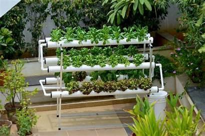 Hydroponic Garden Vertical Gardening Minimalist Table Exterior
