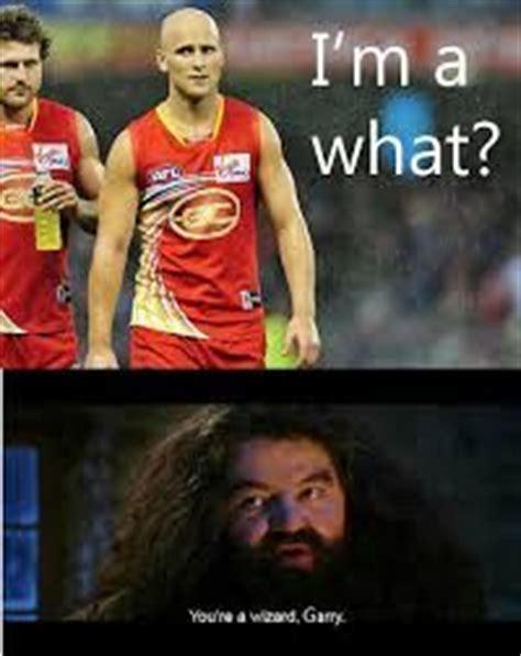 Footy Memes - afl memes pro afl pinterest wizards meme and search