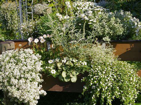 Blumenkästen Für Den Balkon by Pflanzen F 252 R Den Balkon In Wei 223