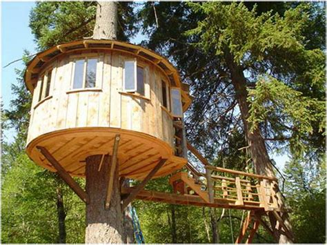 tree house designs ideas unique cool tree houses design ideas tree house