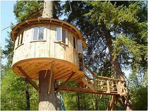 Ideas : Unique Cool Tree Houses Design Ideas Tree House ...