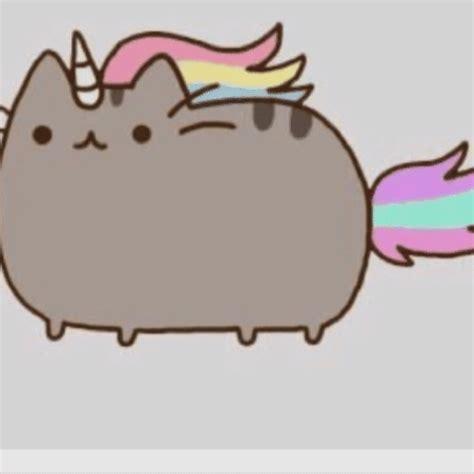 draw unicorn pusheen pusheen  cat amino amino