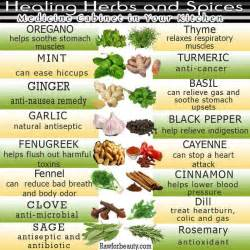 Spices And Herbs Chart www imgarcade com - Online Image