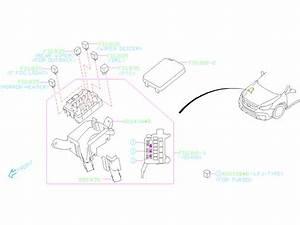 2020 Subaru Outback Fuse  Main  Electrical  Wiring