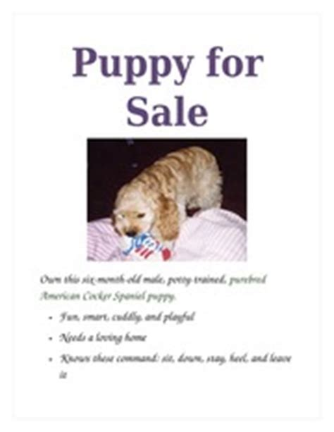 Puppy For Sale Flyer Templates by Lab 1 1 Document Storage At Home History