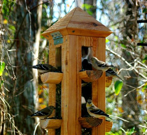 handmade rustic cypress wood bird feeder finch feeder and