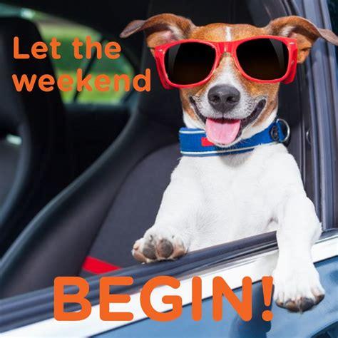 Happy Weekend Meme - 376 best good morning images on pinterest