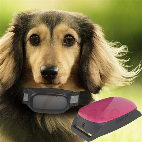 mini gps tracking chip  pets dogs cats buy gps