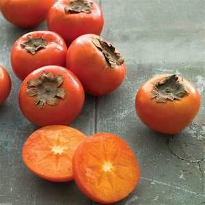 10 American Persimmon, Diospyros virginiana Seeds A K a