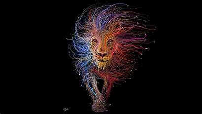 8k Lion Colorful Artistic King Wallpapers Ultra