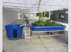 Aquaponic Supply Aquaponics System You Can Start