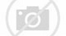 The Passion (TV Series 2008-2008) — The Movie Database (TMDb)