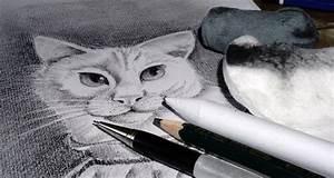 Zeichnen Lernen Mit Bleistift : mit bleistift zeichnen variationsphase ~ Frokenaadalensverden.com Haus und Dekorationen