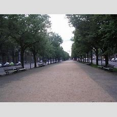 Unter Den Linden (berlin)  2019 All You Need To Know