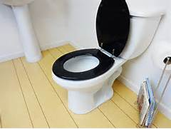 Black And White Toilet Seat by Black Glitter Toilet Seat Std Round Potty Training Concepts