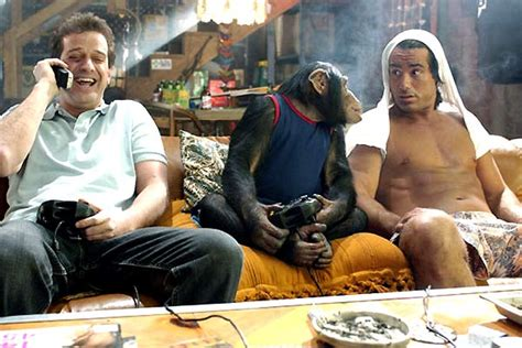 the top 10 stoner movies of all time