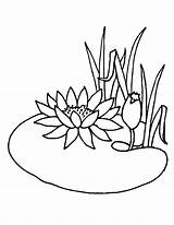 Pond Coloring Pages Lotus Flower Drawing Animals Water Flowers Summer Lily Chinese Colouring Growing Printable Getcolorings Print Colorings Drawings Visit sketch template
