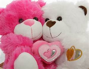 Cute Teddy Bear Pictures – WeNeedFun