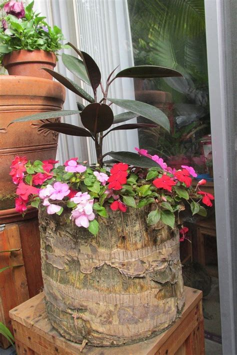 tree stump planter diy projects